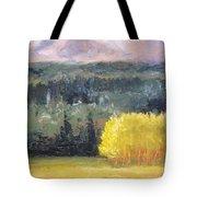 Foot Of The Mountain Tote Bag by Nancy Merkle