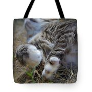 For The Love of Stretching Tote Bag by Marilyn Wilson