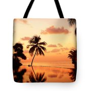 For You. Dream Comes True II. Maldives Tote Bag by Jenny Rainbow