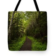 Forest Beckons Tote Bag by Mike Reid