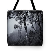 Forest In The Fog Tote Bag by Setsiri Silapasuwanchai