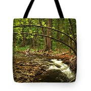 Forest River Tote Bag by Elena Elisseeva