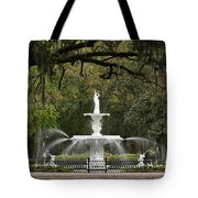 Forsyth Park Fountain - D002615 Tote Bag by Daniel Dempster