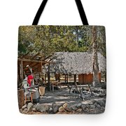 Fountain Of Youth - Living History Tote Bag by Christine Till