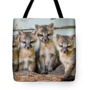Four Fox Kits Tote Bag by Paul Freidlund