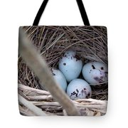 Four Red-winged Blackbird Eggs Tote Bag by J McCombie