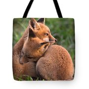 Fox Cubs Cuddle Tote Bag by William Jobes