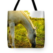 Freckles At Sunset Tote Bag by David Morefield