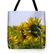 French Sunflowers Tote Bag by Georgia Fowler