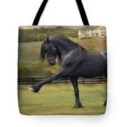Friesian Stallion Tije Spanish Walk Tote Bag by Fran J Scott