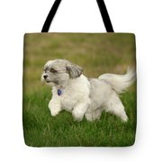 Frollic Tote Bag by Arthur Fix