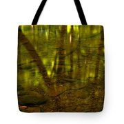 From River Rocks To Forest Reflections Tote Bag by Adam Jewell