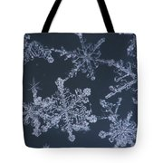 Frost Crystal On Glass Kodiak Isl Tote Bag by Marion Owen