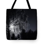 Frost Night Tote Bag by Erik Brede