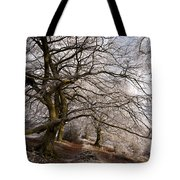 Frosted Path Tote Bag by Anne Gilbert