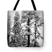 Frozen Beauty Tote Bag by Betty Depee