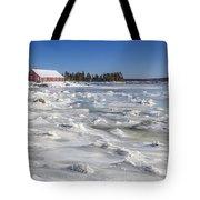 Frozen Tote Bag by Evelina Kremsdorf