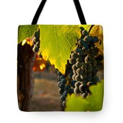 Fruit Of The Vine Tote Bag by Bill Gallagher