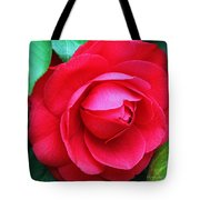 Fuchsia Camellia In Pastel Tote Bag by Suzanne Gaff