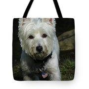 Fuzzy Tote Bag by Karol Livote
