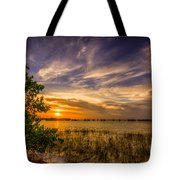 Gandy Lagoon Tote Bag by Marvin Spates