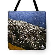 Gannets At Cape St. Mary's Ecological Bird Sanctuary Tote Bag by Elena Elisseeva