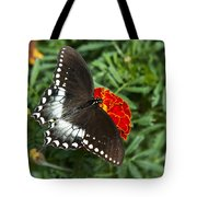 Garden Spice Butterfly Tote Bag by Christina Rollo