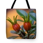 Gardenia Hips Tote Bag by Frank Tozier