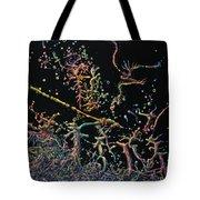 Genesis Tote Bag by James W Johnson