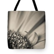Gerbera Blossom - Bw Tote Bag by Hannes Cmarits