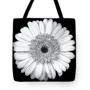 Gerbera Daisy Monochrome Tote Bag by Adam Romanowicz