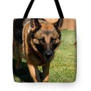 German Shepherd Tote Bag by Kay Novy