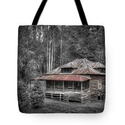Ghost In The Window Tote Bag by Debra and Dave Vanderlaan
