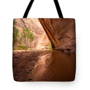 Giant Alcove Coyote Gulch - Utah Tote Bag by Gary Whitton