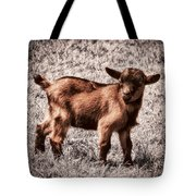Gizmo Tote Bag by Wim Lanclus
