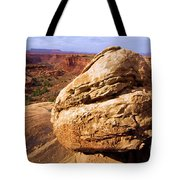 Glacial Erratic Tote Bag by Adam Jewell