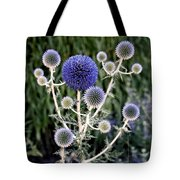 Globe Thistle Tote Bag by Rona Black