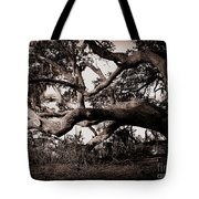Gnarly Limbs At The Ashley River In Charleston Tote Bag by Susanne Van Hulst