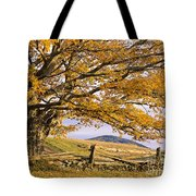 Golden Autumn Tote Bag by Alan L Graham