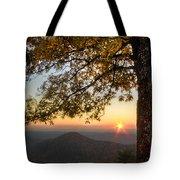 Golden Lights Tote Bag by Debra and Dave Vanderlaan