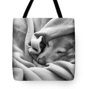 Golden Retriever Dog Under The Blanket Tote Bag by Jennie Marie Schell