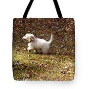Golden Retriever Puppy Tote Bag by Andrea Anderegg