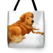 Golden Retriever Snowball Tote Bag by Christina Rollo