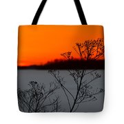 Gone Is The Sun Tote Bag by Rachel Cohen