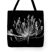 Grace Tote Bag by Rona Black