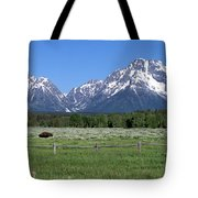 Grand Teton Buffalo Tote Bag by Brian Harig