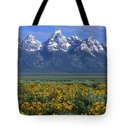 Grand Teton Summer Tote Bag by Sandra Bronstein