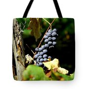 Grape Harvest Tote Bag by Neal  Eslinger