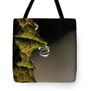 Grape Leaf With Rain Drop Tote Bag by Cindi Ressler