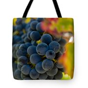 Grapes On The Vine Tote Bag by Bill Gallagher